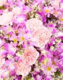 Цветок для украшения Стоковое Изображение RF