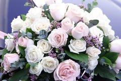 цветок 001 Стоковое фото RF