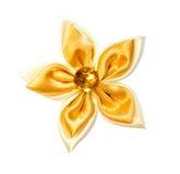 Цветок. Стоковое Изображение
