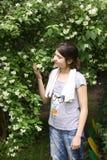 Цветок jasmin запаха девочка-подростка на кусте Стоковая Фотография RF
