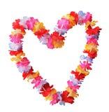 Цветок Lei стоковые фото