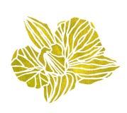 Цветок OrÑ акварели спрятанный  зеленый Стоковое Изображение
