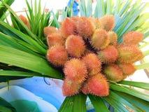 Цветок Urucum в рынке стоковые изображения