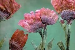 Цветочная композиция высушенного и отжатого красного Calendula цветет Стоковые Фото