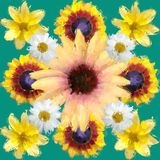 Цветочная композиция, иллюстрация Иллюстрация штока