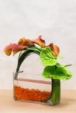 Цветочная композиция с лилиями Calla, антуриумом и растительностью дальше Стоковое Фото