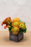 Цветочная композиция с лилиями Calla, гвоздика, succulent, protea Стоковые Изображения RF
