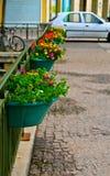 Цветочные горшки Стоковые Изображения