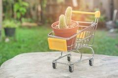 Цветочный горшок в желтом мини комплекте магазинной тележкаи или вагонетки супермаркета на деревянном поле в винтажном стиле Стоковые Фотографии RF