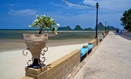 Цветочный горшок в красивом пляже Стоковое Изображение RF