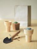 Цветочный горшок конуса мороженого Стоковое Изображение RF