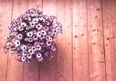 Цветочный горшок на деревянном поле стоковая фотография rf