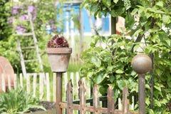 Цветочный горшок на загородке сада стоковая фотография
