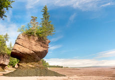 Цветочный горшок на утесах Hopewell, Нью-Брансуик, Канада Стоковое Изображение RF