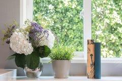 Цветочный горшок окном Стоковое Фото