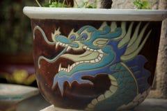 Цветочный горшок дракона Стоковая Фотография