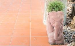 Цветочный горшок слона на поле Стоковое Фото