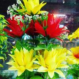 Цветочный горшок стоковые изображения rf