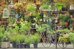 Цветочный магазин Стоковое фото RF