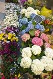Цветочный магазин Стоковое Изображение RF