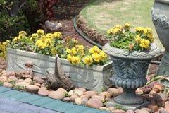 Цветочный сад в баках Стоковая Фотография RF