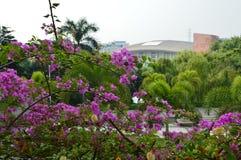 Цветочный сад с современной архитектурой Стоковая Фотография