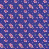 Цветочный узор акварели безшовной руки вычерченный винтажный с розовыми розами бесплатная иллюстрация
