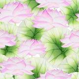 Цветочный узор акварели безшовный с лотосом Стоковое Изображение