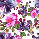 Цветочный узор акварели Безшовный с фиолетовым и розовым букетом на белой предпосылке вектор Иллюстрация штока
