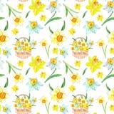 Цветочный узор весны акварели в желтых цветах с цветками daffodils на белой предпосылке Ботанической иллюстрация покрашенная руко иллюстрация штока