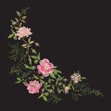 Цветочный узор моды вышивки с одичалыми розами Стоковая Фотография