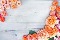 Цветочный узор, рамка сделанная роз на деревянной предпосылке Плоское положение, взгляд сверху Валентайн предпосылки s Стоковое Изображение