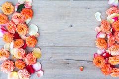 Цветочный узор, рамка сделанная роз на деревянной предпосылке Плоское положение, взгляд сверху Валентайн предпосылки s Стоковая Фотография RF