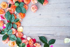 Цветочный узор, рамка сделанная роз на деревянной предпосылке Плоское положение, взгляд сверху Валентайн предпосылки s Стоковые Фотографии RF