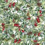 Цветочный узор рождества акварели Вручите покрашенный snowberry и ель разветвляет, ягоды и листья, конусы сосны изолированные дал Стоковые Изображения