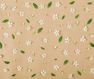 Цветочный узор сделанный из белых цветков весны, бутонов и листьев зеленого цвета на предпосылке коричневой бумаги Плоское положе Стоковое Изображение