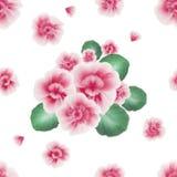 Цветочный узор с гуашью одна картина хода Безшовная картина с розовым африканским фиолетом, альтом цветет на белом backgro Стоковые Фото