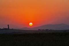 Цветы ландшафта установки Солнця стоковая фотография