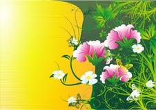 цветы бабочек летая кругом Стоковые Изображения