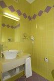 цветы ванной комнаты холодные отражают wc лотка Стоковое Изображение RF