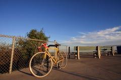 цветы велосипеда Стоковое фото RF