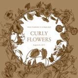 Цветы Гольцы Классическая открытка в винтажном стиле Ботаническая иллюстрация Стоковые Фото