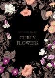 Цветы Гольцы Классическая открытка в винтажном стиле Ботаническая иллюстрация Стоковые Фотографии RF