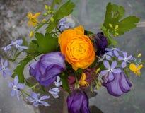 Цветы лета Стоковые Изображения RF