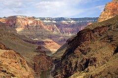 цветы каньона стоковое изображение