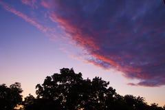 цветы облаков крася заход солнца стоковое фото