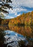 Цветы осени отражают в озере стоковое изображение