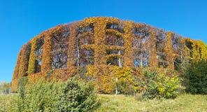 Цветы осени теплые Закамуфлированный охотящся кабина окруженная деревьями и изгородями стоковые фотографии rf