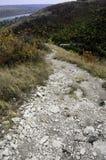 Цветы осени Шикарная прогулка в парке на дороге горы каменистой стоковые фотографии rf