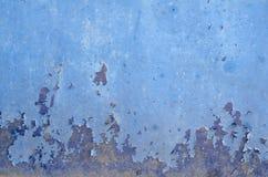 Цветы отказа на поверхности Стоковые Изображения